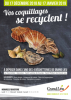 Affiche collecte-coquillages V1